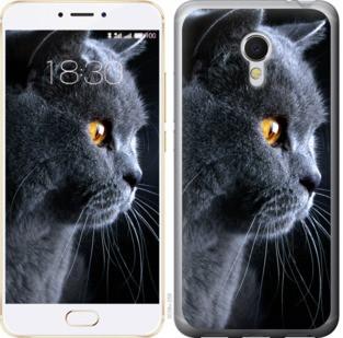 """Чехол на Meizu MX6 Красивый кот """"3038c-259-19380"""""""