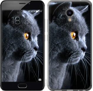 """Чехол на Meizu M3e Красивый кот """"3038u-607-19380"""""""