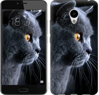 """Чехол на Meizu M3 Красивый кот """"3038c-272-19380"""""""