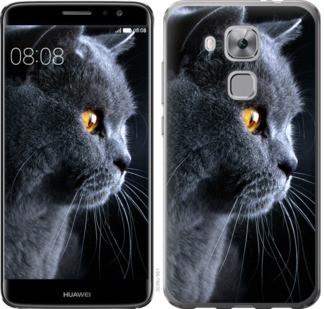 "Чехол на Huawei Nova Plus Красивый кот ""3038c-961-19380"""