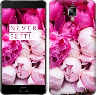 "Чехол на OnePlus 3T Розовые пионы ""2747c-1617-19380"""