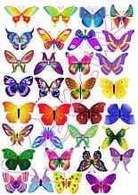 Вафельна картинка Метелики 15