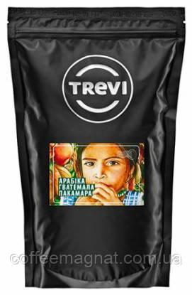 Кофе в зернах Trevi Гватемала Пакамара (100% арабика) 1 кг
