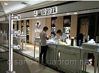 Светильник для подсветки витрин  LED TLS -3*1W 220V  6400К  серебро  250mm, фото 3