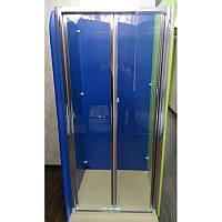 Душевая дверь ZDM-120-2 120х190