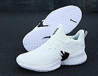 """Кроссовки мужские Adidas Continental  """"Белые"""" р. 41-45"""