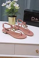 Босоножки Dolce & Gabbana 80472 ROSA POLVERE 2