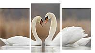 Модульная картина 100х53 см Лебеди