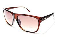 Очки Lacoste 2325 brown