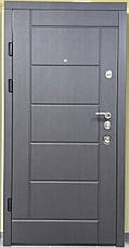 Двери квартирные, серия Элит Т-13, модель 116, гнутый профиль, коробка 130 мм, полотно 100мм, Securemme, фото 2