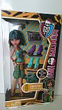 Кукла Monster High Клео де Нил я люблю обувь - Cleo De Nile Doll & Shoe Collection, фото 4