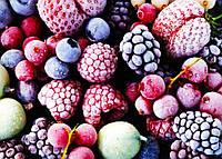 Жимолость замороженная. Ягоды замороженные Смородина, Малина, Вишня. Овощи. Органические ягоды из Украины