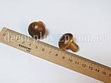 Гриб декоративный, коричневый, фото 2