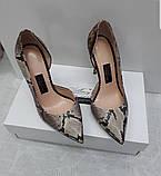 Женские бежевые-коричневые туфли с вырезом из натурального питона, фото 2