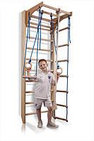Детский спортивный уголок натуральное дерево Комби-2-220