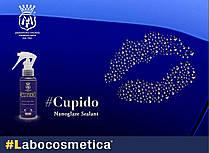Labocosmetica Cupido нанокомпозитный герметик(силант) для защиты ЛКП (100 мл.), фото 2