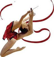 Художественная гимнастика, инв...
