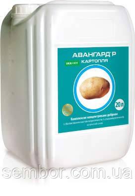 АВАНГАРД Р Картопля