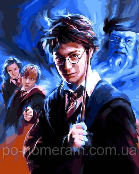 Раскраска для взрослых Гарри Поттер (VP1117) 40 х 50 см ...