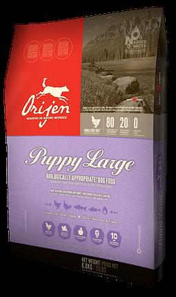 ORIJEN Puppy Large Breed, сухой корм для щенков крупных пород, 11,4 кг, фото 2
