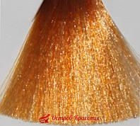Стойкая крем-краска для волос Gamma Color Erayba 10/43 Золотисто-медный платиновый блондин, 100 мл