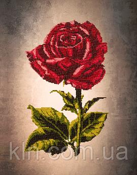 Картини для вишивки бісером на полотні з малюнком FLF-009 Троянда 30*40 Чарівна країна якісний