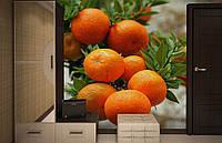 Флизелиновые Фотообои Мандарины от производителя за 1 день. Любая картинка и размер. ЭКО-обои
