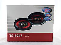 Автоколонки TS 6947 (6)