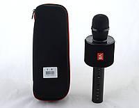 Микрофон DM Karaoke V8 + чехол (50), фото 1
