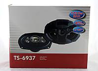 Автоколонки TS 6937 (6)