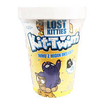 Игровой набор Lost Kitties Kit-Twins Toy