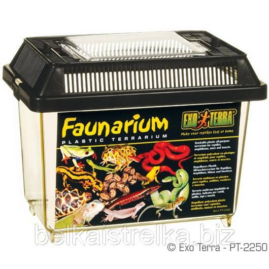 Террариум Exo Terra Faunarium, 18х11х12 см.