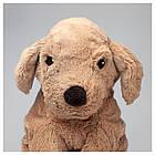 IKEA GOSIGGOLDEN Мягкая игрушка, Желтая собака, золотистый ретривер  (001.327.98), фото 3
