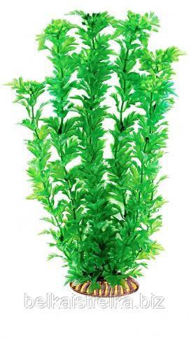 Аквариумное растение Aquatic Plants №341, 34 см.
