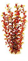 Аквариумное растение Aquatic Plants №346, 34 см.