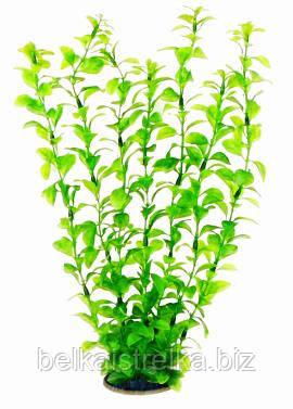 Аквариумное растение Aquatic Plants №349, 34 см.