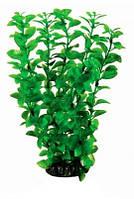Аквариумное растение Aquatic Plants №292, 29 см.