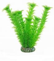 Аквариумное растение Aquatic Plants №197, 19 см.