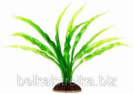 Аквариумное растение Aquatic Plants №198, 19 см.