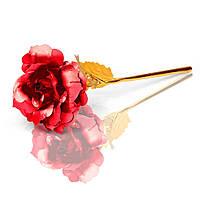 Золотая роза с красным бутоном (GR01R)