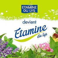 Новая поставка и абсолютные новинки Etamine du Lys!