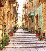 Фотообои флизелиновые 3D Город 225х250 см Старая улица в цветах (MS-3-0047)