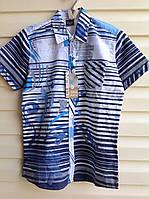 Рубашка с короткими рукавами для мальчиков 128.140,152,164 роста