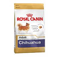 Корм Royal Canin Chihuahua Adult, для Чихуахуа от 8 месяцев, 0,5 кг