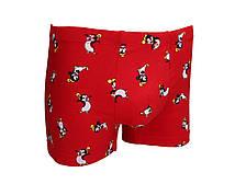 Трусы боксеры мужские #happy_deer Chilly L Red