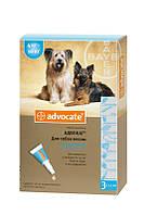 Капли Advocate от глистов, блох, клещей для собак весом от 4 до 10 кг, 1мл/ 1 шт