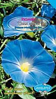 Іпомея «Синя зірка» (Ipomoea tricolor, Blue Star)