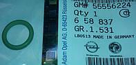 Кольцо (прокладка, резинка, сальник) уплотнительное (уплотнительная) трубки (направляющей) штока (щупа , индикатора) уровня масла в двигателе GM