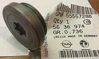 Пробка (заглушка) распредвала с внутренней звёздочкой металлическая с уплотнительным кольцом GM 5636974 555572