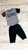 Tommy серый 1